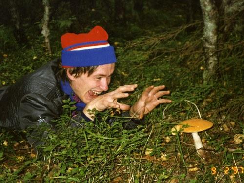 Последствия употребления галлюциногенных грибов