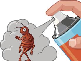 Обработка инсектецидами