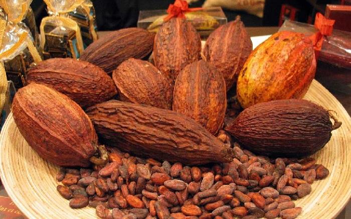 Вред какао-бобов