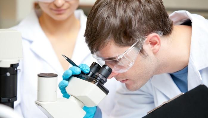 Лейкоцитарный индекс интоксикации понижен у ребенка