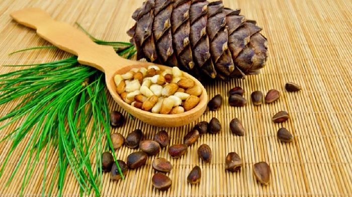 Симптомы отравления кедровыми орешками