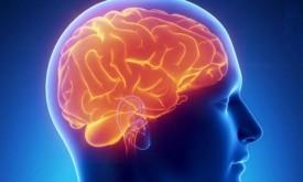 Отравление мозга человека