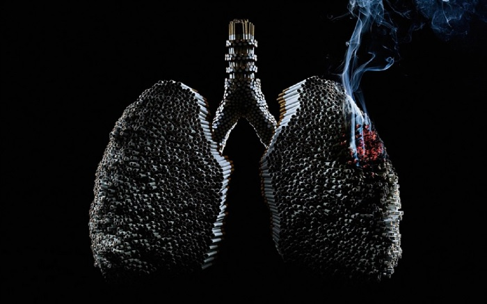 Влияние табака на организм человека